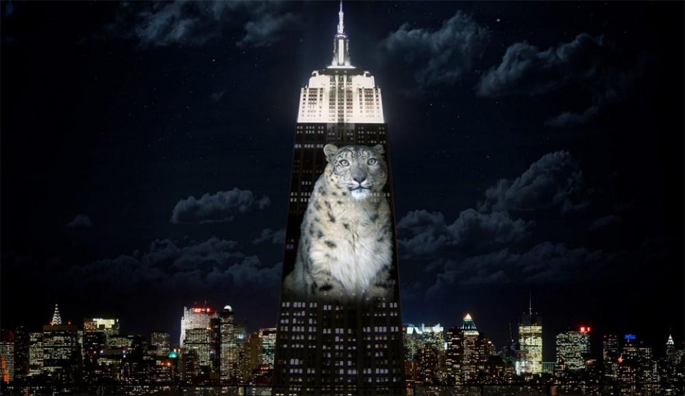 Le célèbre gratte-ciel de New-York Empire State Building se met aux couleurs des espèces animales en danger