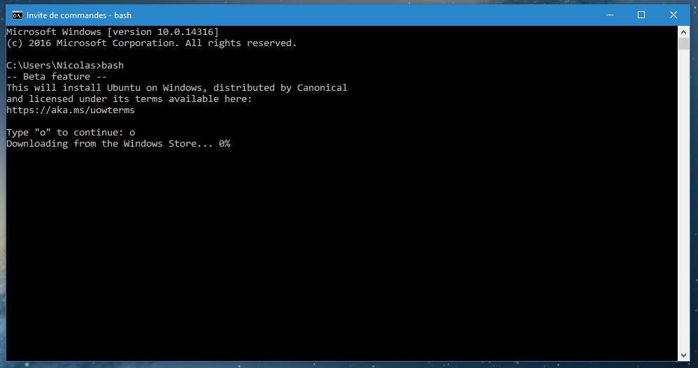 comment telecharger linux sur windows 10