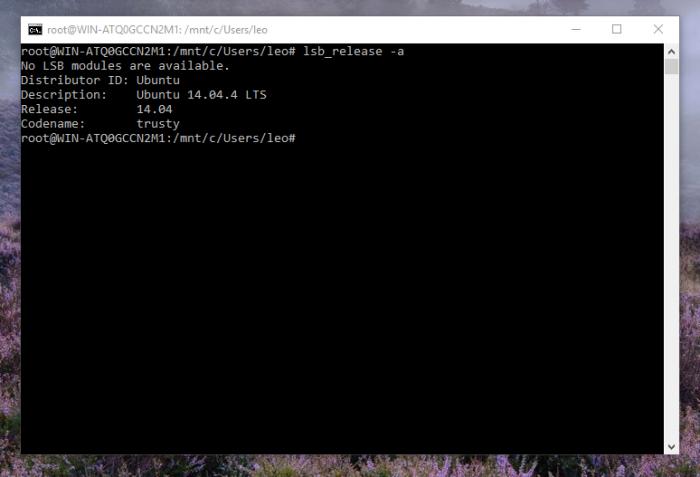Lancer vos applications Unix préférées sur Windows est maintenant possible
